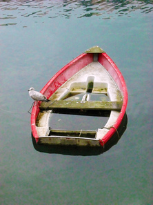 A sinking ship and the Gospel