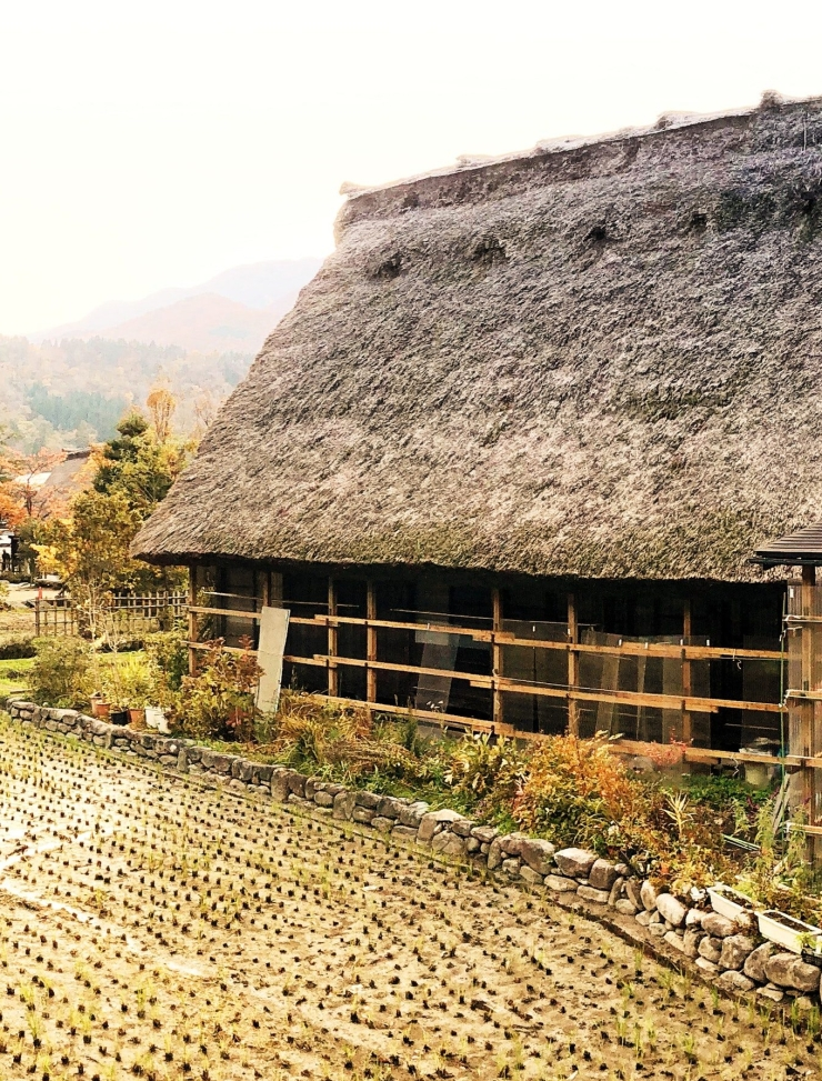architecture-bungalow-daylight-889855